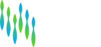 Logo_Northern_Lights_IP